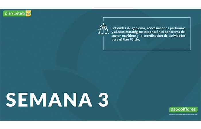 agendaimg13