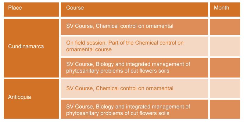 cursos-de-sanidad-inglés-img